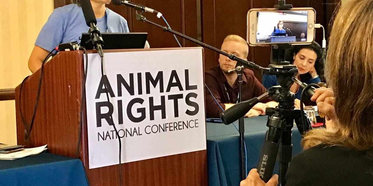 Anita Krajnc Founder of Toronto Pig Save and The Save Movement