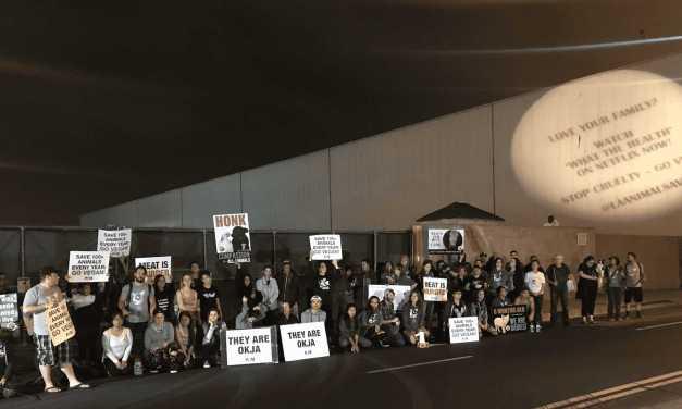 Growing Vigils Outside Slaughterhouses!