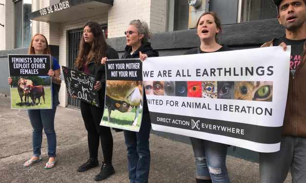 Protesters Outside Cheese Fest: Ditch Dairy!