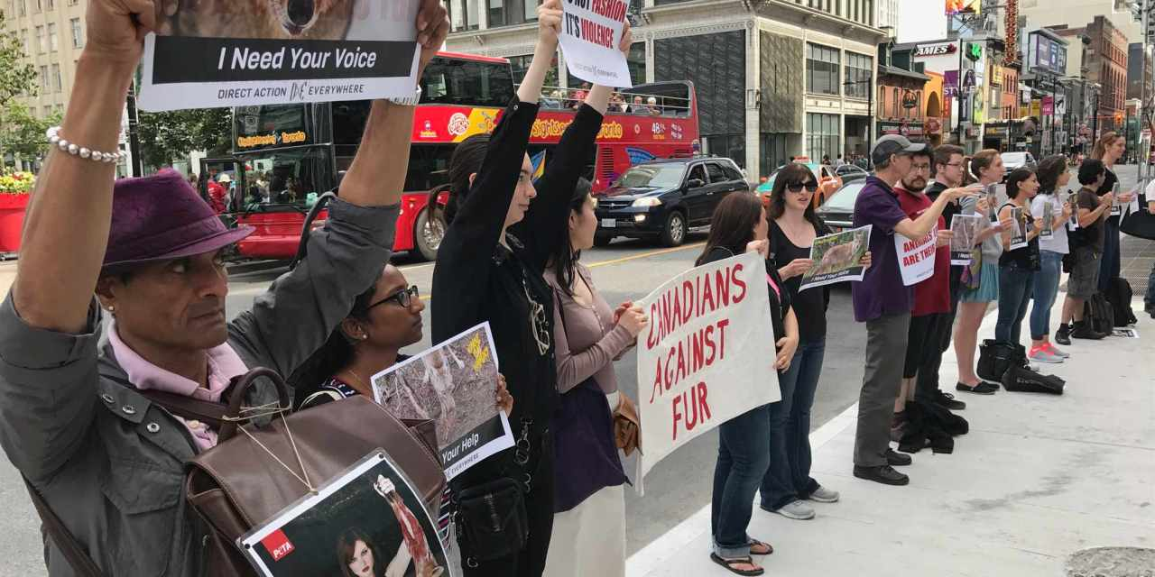 Activists Disrupt Fur Retailer With Bold Speak-Out!