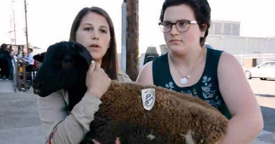22 Animal Activists Arrested in Open Rescue at Slaughterhouse!