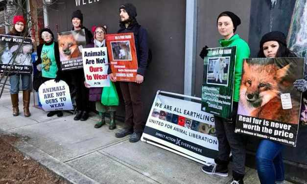 Publisher Of Major Weekly Invites Portland Anti-Fur Protestors Inside To Talk!