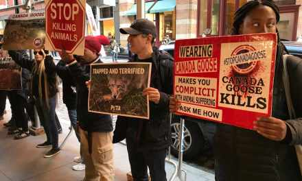 """Fur Kills"" Hits The Big Apple!"