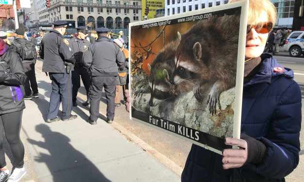 New Yorkers Say NO To Fur!