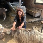 From Teaching Ethics to founding a Sanctuary! Helping People Connect in Europe!