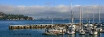 CP2-View of San Francisco from Tiburon-Colour Print Entry