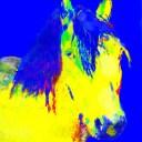 Highland Blue 22-12-15_edited-1