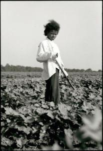 Tallahatchie County, Mississippi, 19 63 Danny Lyon