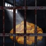 Asaltantes Roban Un Botín de Pollo Frito