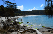 fortescue-bay