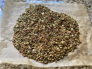 Roasted pumpkin seeds cooling on parchment