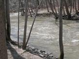 Run the river!