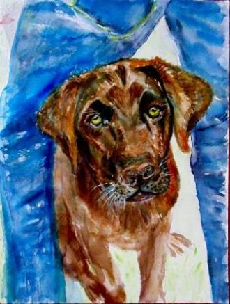 Owen (Black Lab) Watercolour on Paper 9.5x12.5 inches 2015 ©Janice Rafael