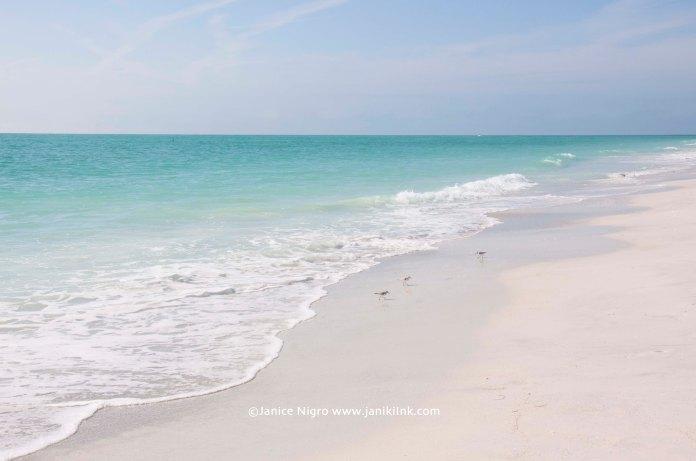 beach florida 0060 copyright