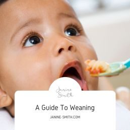 This image has an empty alt attribute; its file name is A-Guide-To-Weaning-1024x1024.jpg