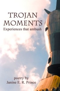 Trojan Moments (ebook) cover image by Janine Prince