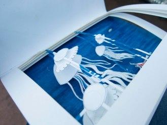 57 Jellyfish Turn Closer