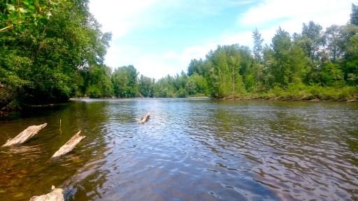 Der Allier - einer der naturbelassendsten Flüsse Europas.