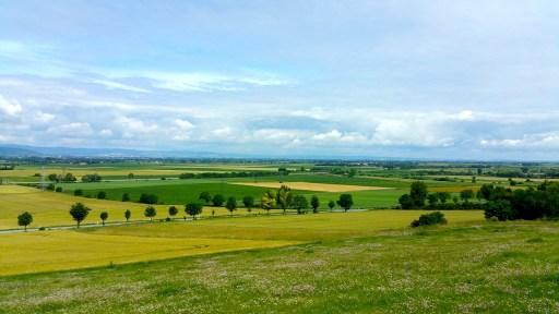 Felder in der Ebene der Grande Limagne.
