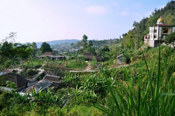 U podnóża Gunung Lawu, mniej więcej na wysokości 900 metrów.