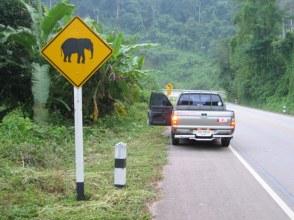 Jedziemy jeszcze bardziej na północ pod granicę z Birmą.