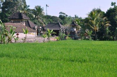Miast na Bali za bardzo nie uraczysz. Wioseczek za to - bardzo dużo.