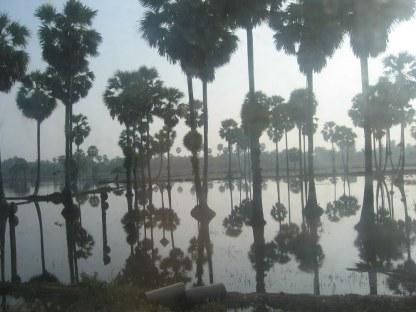 Po porze deszczowej była spora powódź, z którą lokomocyjnie Tajowie sobie doskonale radzą.