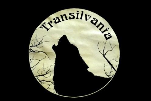 Transylwania, Szigiszoara, zamki chłopskie