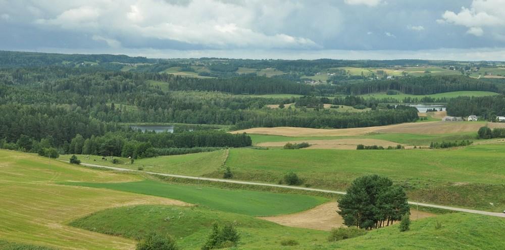 """Widok z Góry Cisowej, """"Suwalskiej Fudżijamy"""". 256,4 m. n.p.m. Jezioro Kopane i Gulbin."""