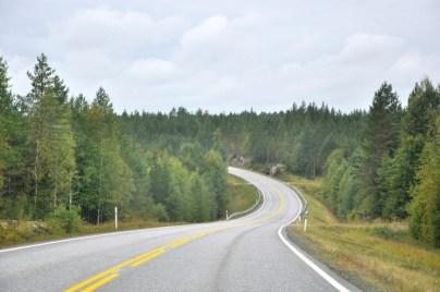 Kalsyczna fińska droga przez kraj dziki i zarośnięty lasami.