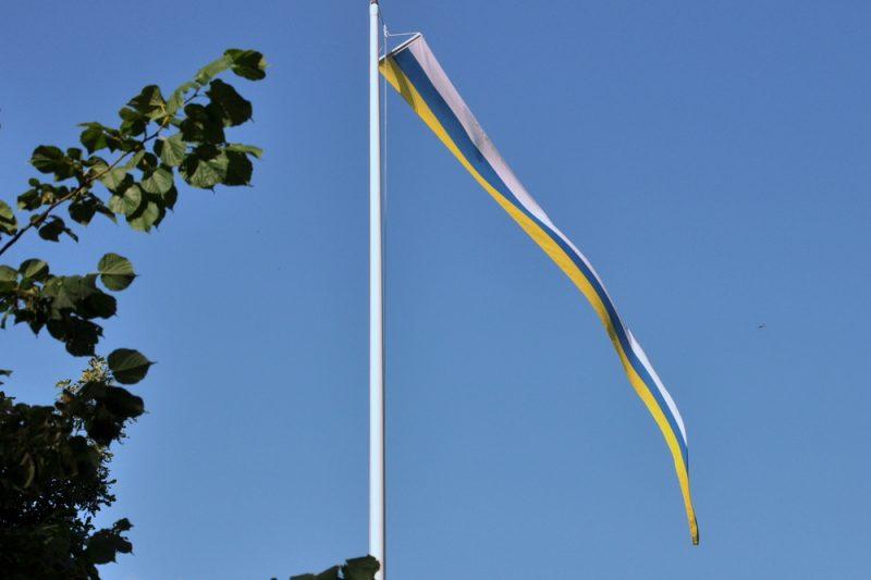 """Cała zachodnia i zachodnio-południowa Finlandia jest zdominowana przez """"mniejszość"""" szwedzką, stąd takie flagi."""