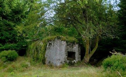 """Przez czeskie Jizery przechodził pas """"lekkich bunkrów przeciwpiechotnych"""", z czasów II wojny światowej. Była to tzw. linia Maginota. Pieszczotliwa nazwa: """"řopiky""""."""