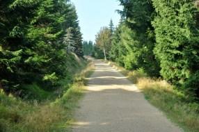 Jizerske Hory. Dominują tu świerkowe lasy, podmokłe łąki (są tu torfowiska) i szerokie ściechy.