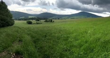 Jaworzyna Konieczniańska (881m), granica ze Słowacją.