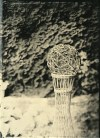 """Wooden Ball, Ambrotype 5x7"""", 09/2013"""