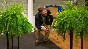 between two ferns movie trailer