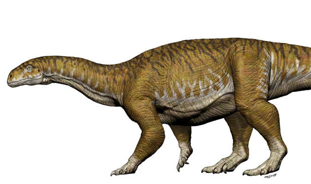 New colossal dinosaur size of DOUBLE DECKER bus discovered – 30 million years older than expected!