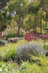 Cranbourne Botanic Gardens