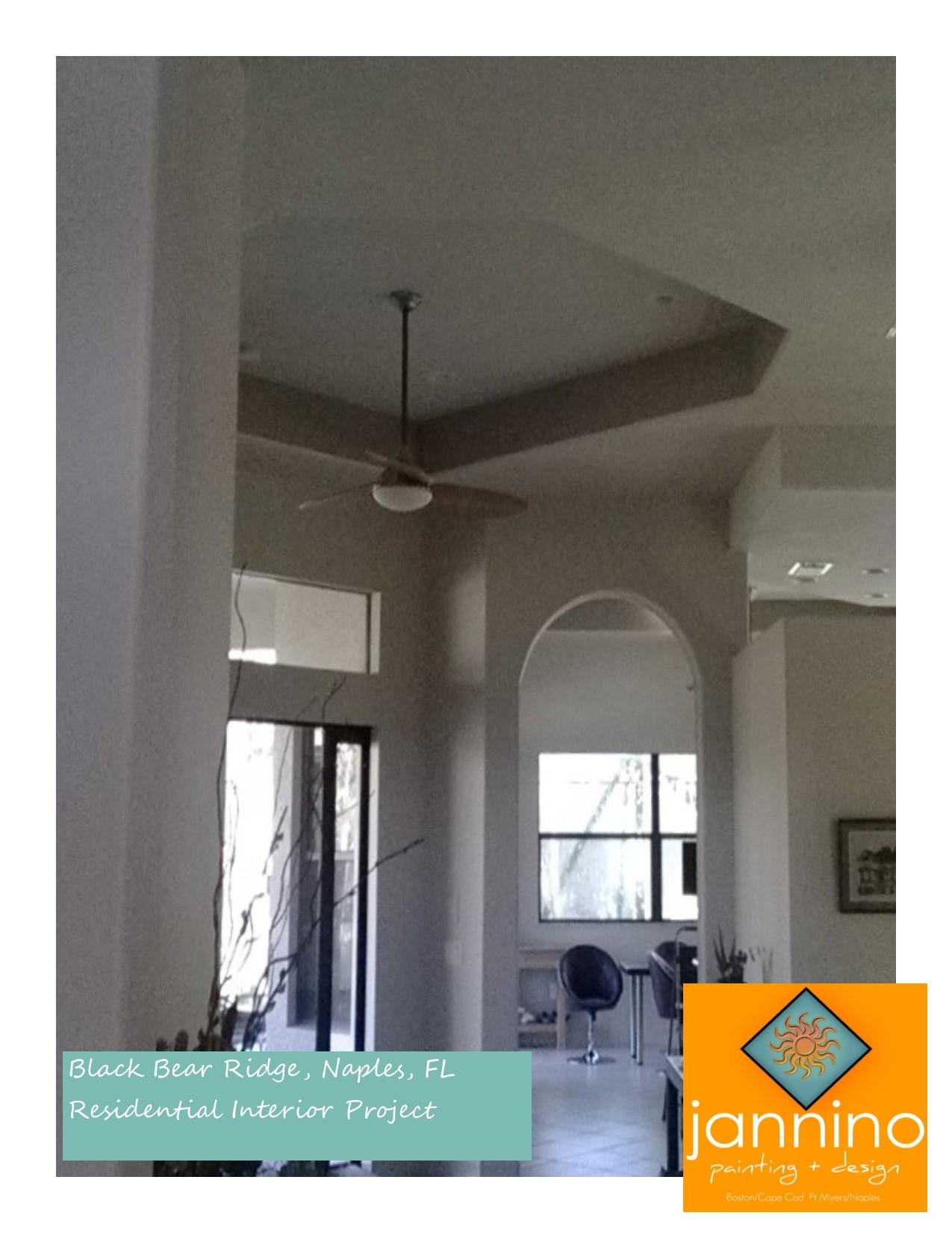 Jannino Painting Design Interior Residential Painting