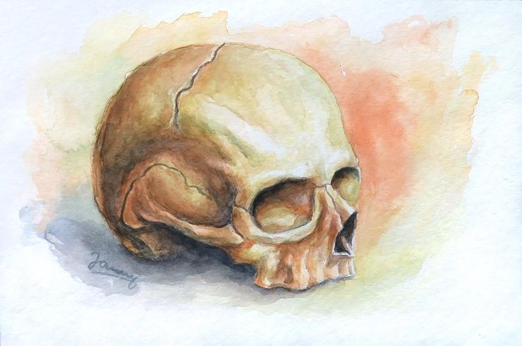 Skull Aquarell Kunst Gemälde Painting Totenkopf Schädel