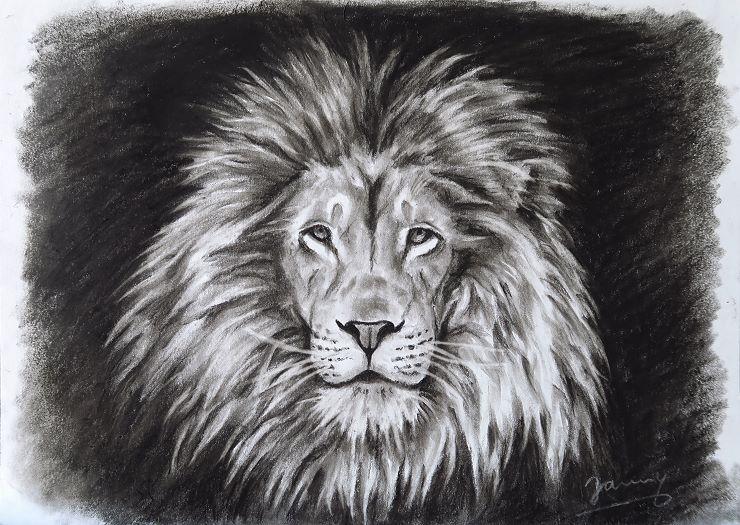 Löwe Kohlezeichnung Kunst Malerei