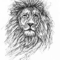 Löwe Scribble