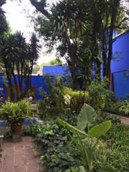 Frida y Diego house Mexico City gardens