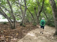 Cahuita National Park trail