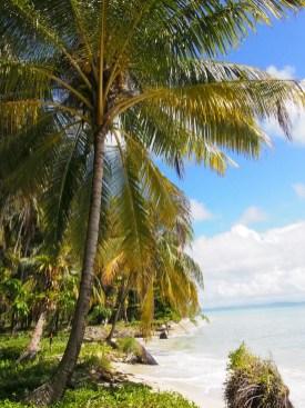 zapatillas islands- coast