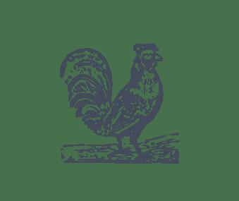 JAN | Jan Hendrik van der Westhuizen | Various Recipes