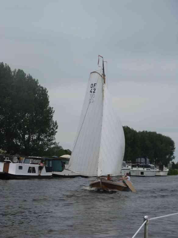 Plattodenboot unter Segeln