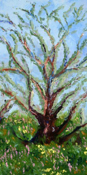 Van Gogh Shrub