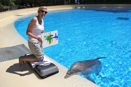 painting with dolphins