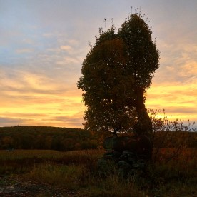 Smoldering Sunrise